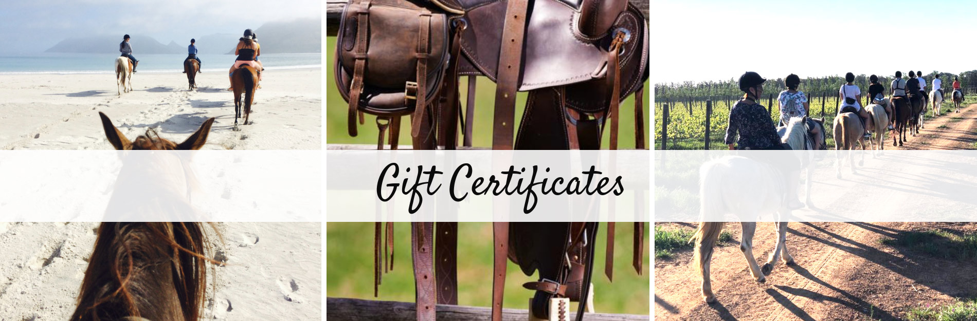 Gift Vouchers - Horse Riding Cape Town