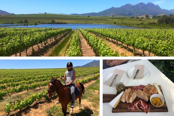 Stellenbosch Wine Tasting Outride