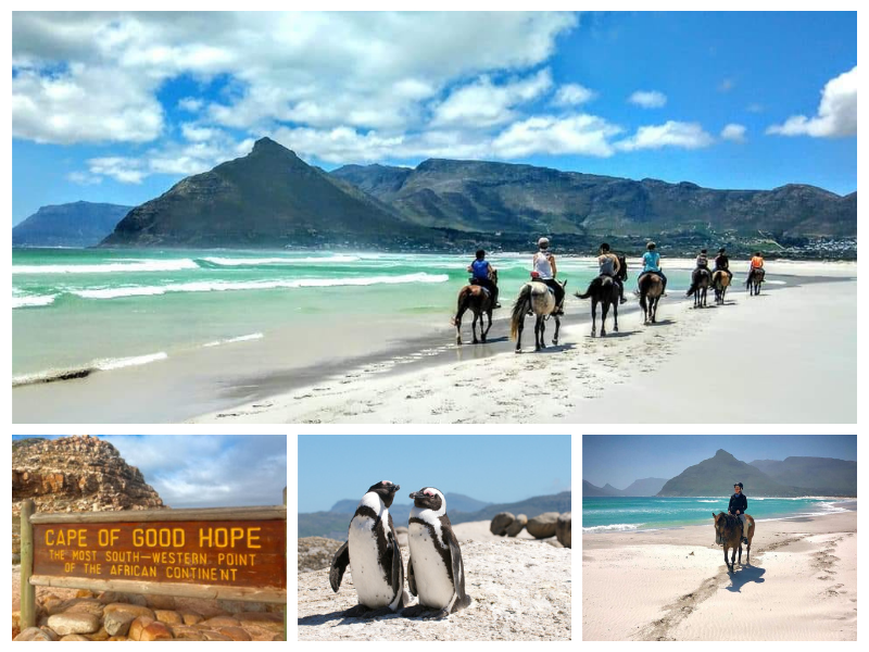 Cape Point and Noordhoek-2