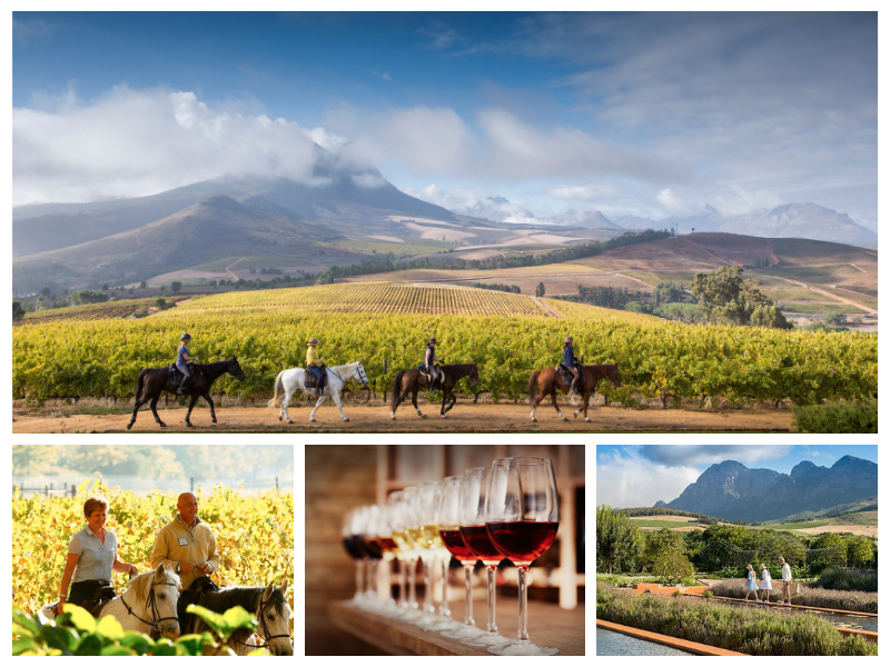 Horse Riding, Wine Tasting and Garden Tour